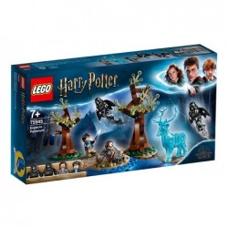 LEGO HARRY POTTER 75945...